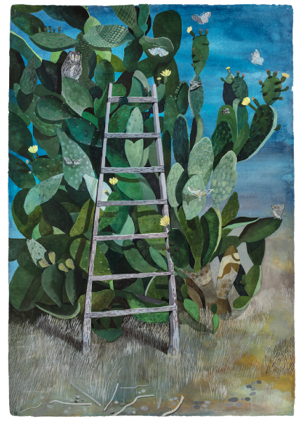 Sophie Charalambous, Night Flowering Prickly Pear, 2020. Courtesy of Alice Black