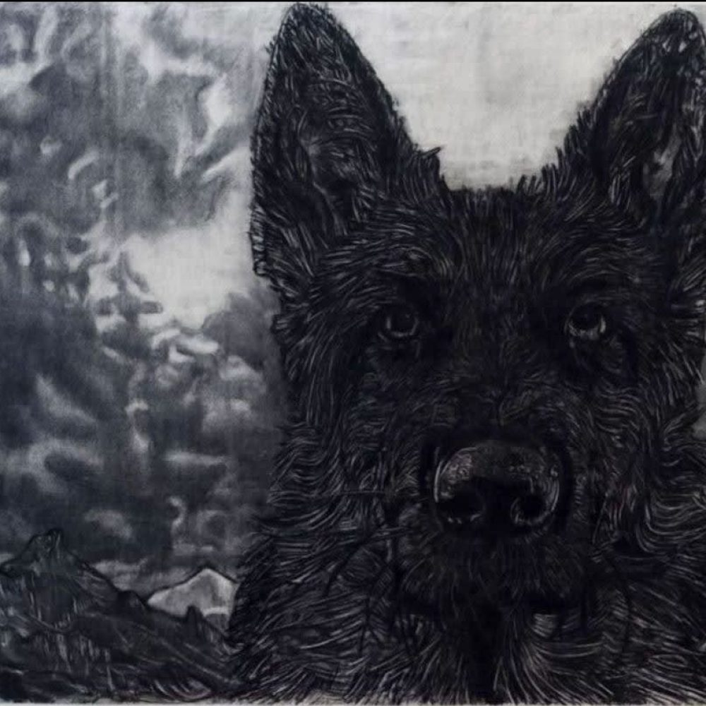 Gary Coyle, Black Dog, 2020, Charcoal on paper, 150 x 180cm © The Artist